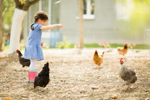 Petite Fille à Nourrir Les Poulets Photo Premium