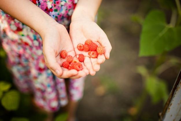 Petite fille travaillant dans un petit jardin de printemps avec des plantes. enfant aidant à la ferme Photo Premium