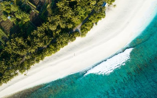 Photo Aérienne Des Maldives Montrant La Magnifique Plage, La Mer Bleu Clair Et Les Jungles Photo gratuit