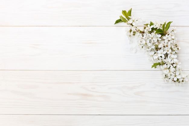 Photo en gros plan de belles branches blanches de cerisier en fleurs. Photo Premium