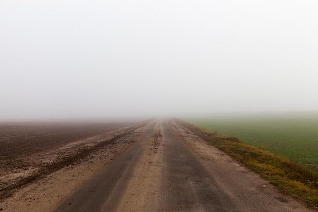 Une Photo En Gros Plan D'une Route Pendant Un Brouillard. Mauvaise Visibilité Photo Premium
