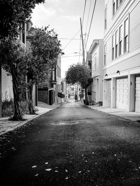 Photo En Niveaux De Gris D'une Rue Vide Entre Des Maisons Avec Quelques Arbres Photo gratuit