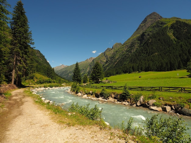 Photo De Paysage D'un Ruisseau Qui Coule De L'eau Photo gratuit
