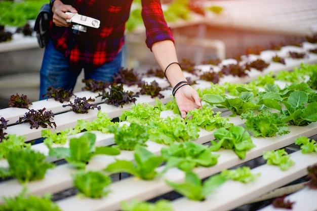 Un Photographe Masculin Prend Des Photos Dans Son Jardin De Salade Et Aime La Photographie. Concept De Photographie Photo Premium