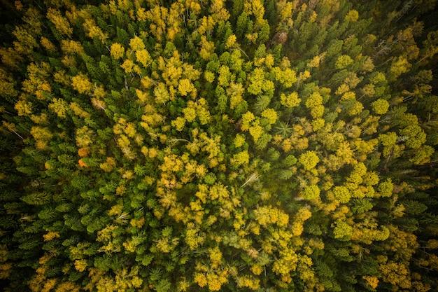 Photographie de la nature vue du ciel Photo gratuit