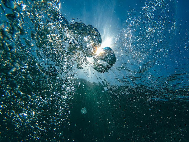 Photographie sous-marine Photo Premium