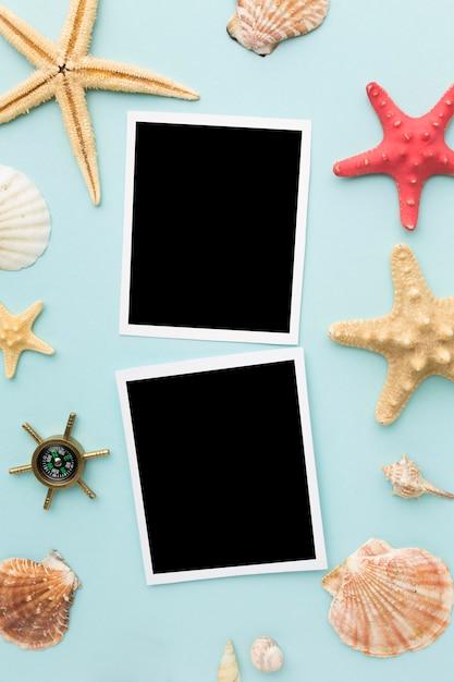 Photos Instantanées De Dessus Avec Des étoiles De Mer Sur La Table Photo gratuit