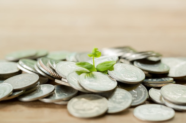 Pièce de monnaie sur la table en bois Photo gratuit
