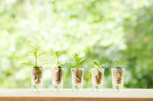 Pièces de monnaie dans cinq verres de verre avec petits arbres Photo gratuit