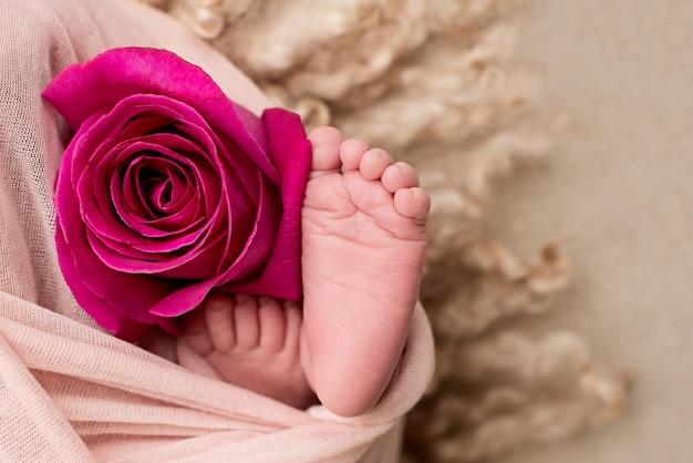 Pieds D'un Nouveau-né Avec Une Fleur Rose. Maternité. Photo Premium