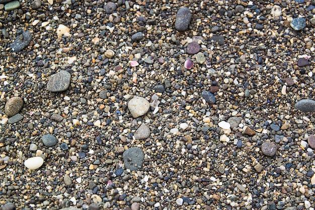 Pierres sur la plage Photo Premium