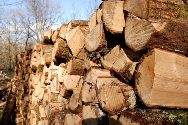 Pile De Beaucoup De Bois De Chauffage Haché Prêt Pour L'hiver Froid Photo gratuit