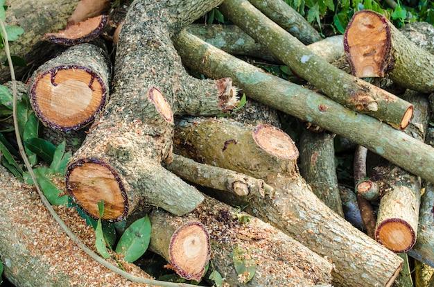 Pile de bois Photo Premium