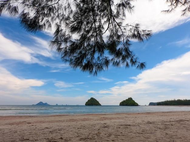 Pin par la plage. Photo Premium