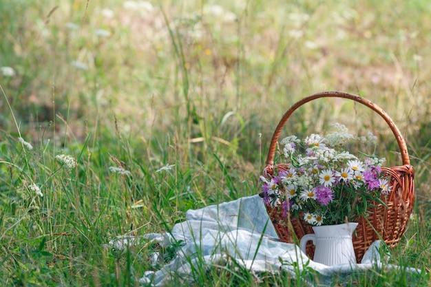 Pique-nique D'été Dans L'herbe Photo Premium
