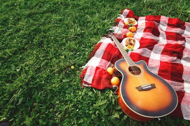 Pique-nique avec de la musique de guitare sur l'herbe Photo Premium