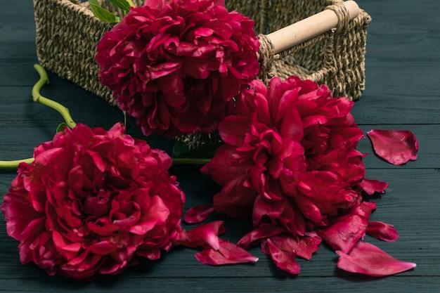 Pivoine Fleur De Printemps. Bonne Fête Des Mères. Carte De Voeux De Fête Des Mères. Cadeau De Fête Des Mères Photo Premium