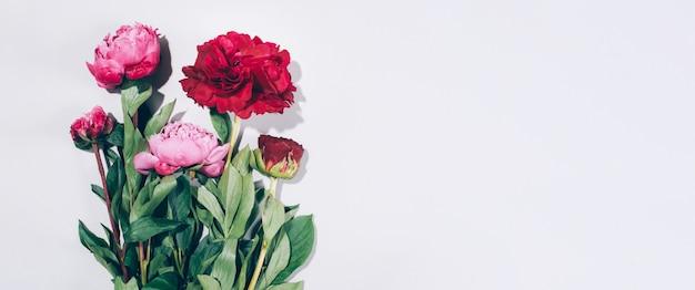 Pivoines roses et feuilles avec des ombres dures sur fond pastel Photo Premium