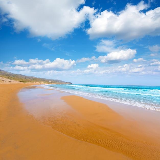 Plage De Calblanque Parc Manga Mar Menor Murcia Photo Premium