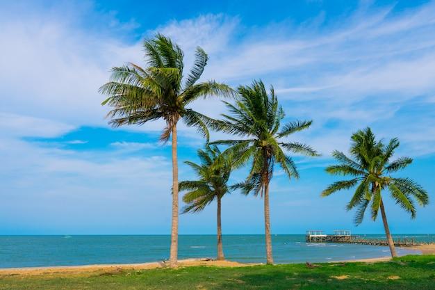 Plage, mer avec palmiers de noix de coco au cours de la saison estivale avec des nuages. Photo Premium