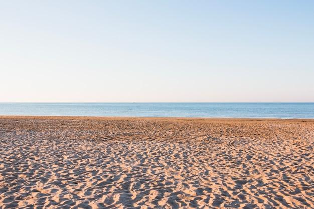 Plage vide avec petites dunes Photo gratuit