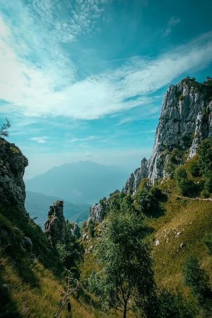 Plan Vertical De Collines Herbeuses Avec Des Arbres Et Des Montagnes Au Loin Photo gratuit