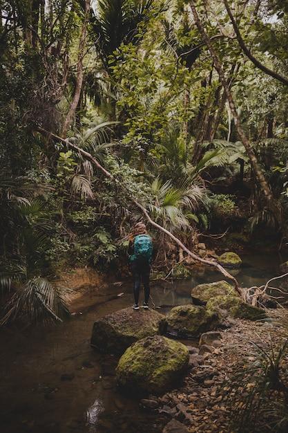 Plan Vertical D'une Fille Sur Les Pierres Des Bois Près Des Chutes De Kitekite, Nouvelle-zélande Photo gratuit