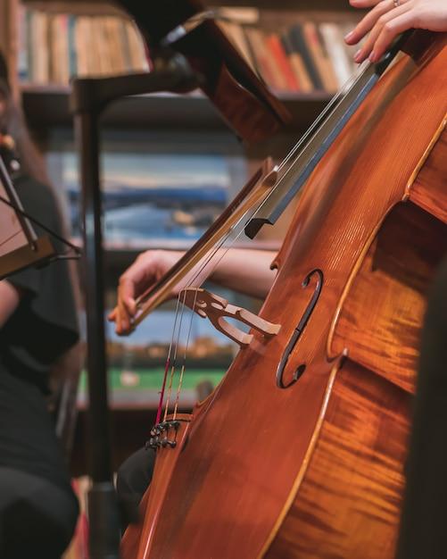 Plan Vertical D'un Musicien Jouant Du Violon Dans Un Orchestre Photo gratuit