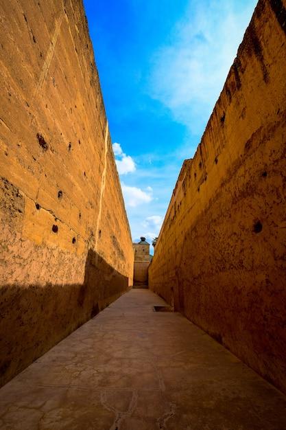 Plan Vertical D'un Sentier Au Milieu Des Murs Bruns Pendant La Journée Photo gratuit