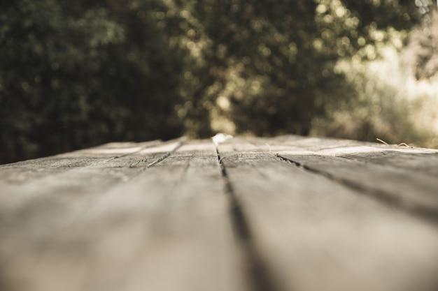Planche de bois dans la forêt Photo gratuit