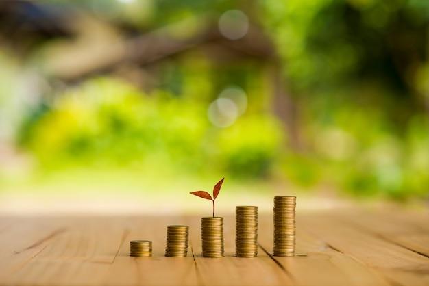 Plant croissant sur la rangée de l'argent de pièce de monnaie, csr dans les affaires Photo Premium