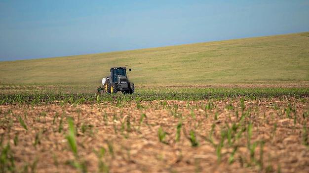 Plantation De Canne à Sucre Par Application D'engrais Et D'insecticides Avec Un Tracteur Photo Premium