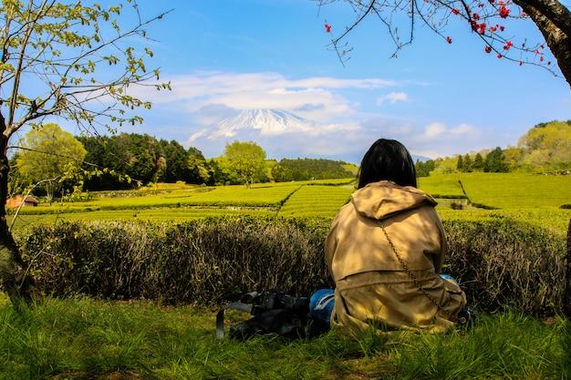 Plantation de thé à l'arrière surplombant le mont fuji avec ciel dégagé à shizuoka, obuchi sasaba, japon Photo Premium