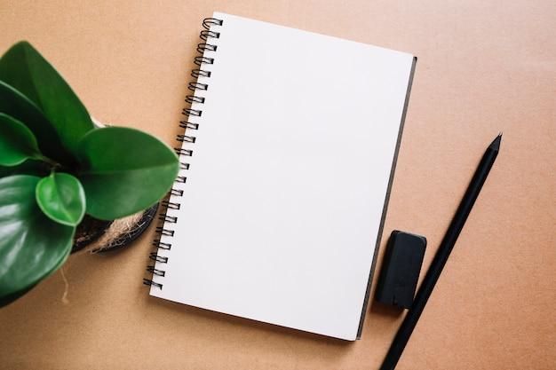 Plante et crayon près de carnet Photo gratuit