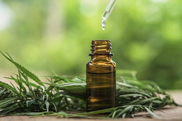 Plante et feuilles de cannabis avec extraits d'huile dans des bocaux. concept médical Photo Premium