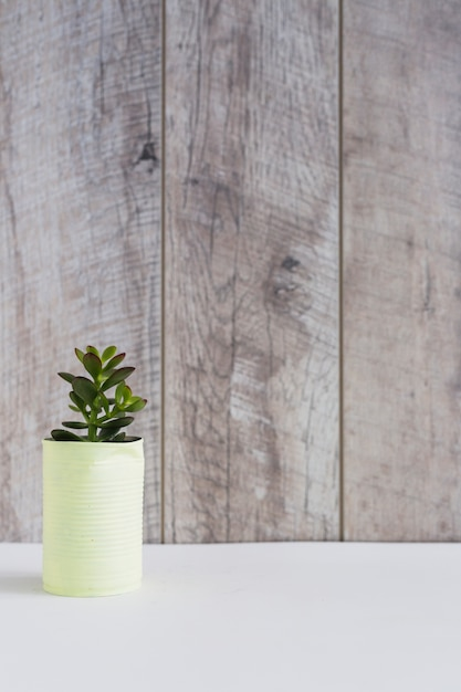 Plante en pot en aluminium peint jaune peut sur un bureau blanc Photo gratuit