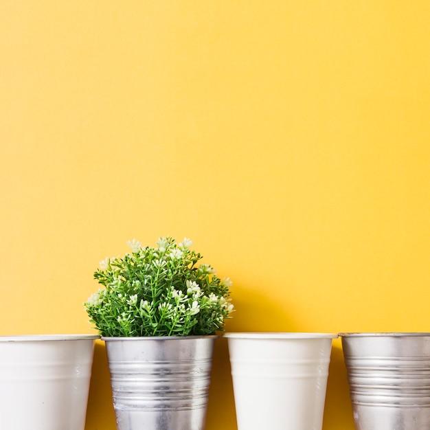 Plante en pot d'argent avec un pot blanc sur fond jaune Photo gratuit