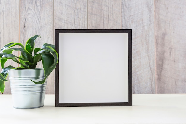 Plante en pot près du cadre photo sur une table blanche Photo gratuit