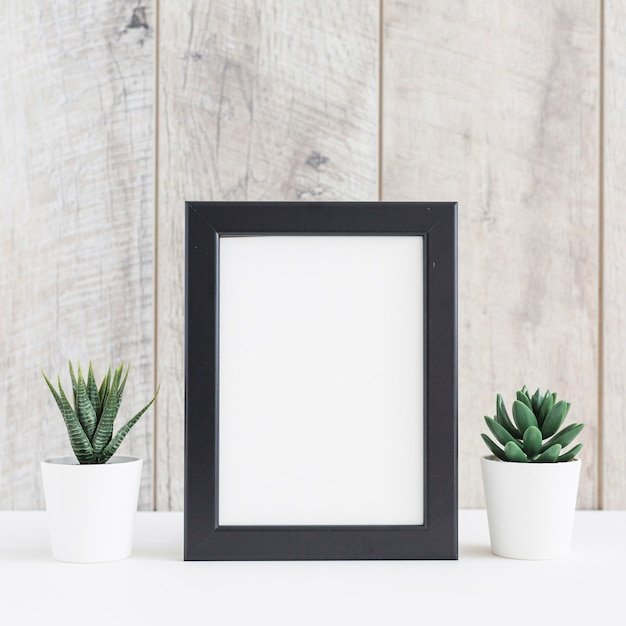 Plante succulente dans deux pots blancs avec le cadre d'image vide contre un mur en bois Photo gratuit
