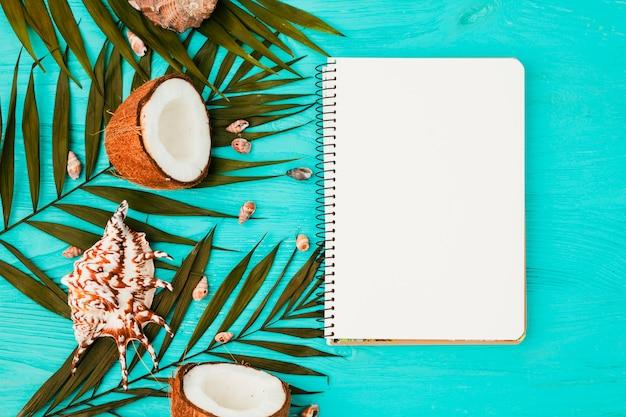 Planter des feuilles et des noix de coco près de coquillages avec cahier Photo gratuit