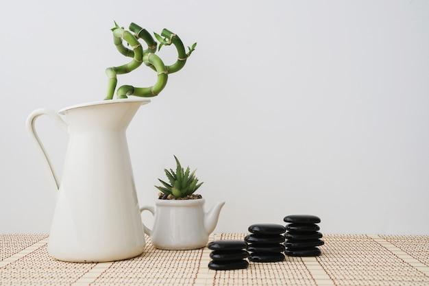 Plantes de bambou et tas de pierres volcaniques Photo gratuit