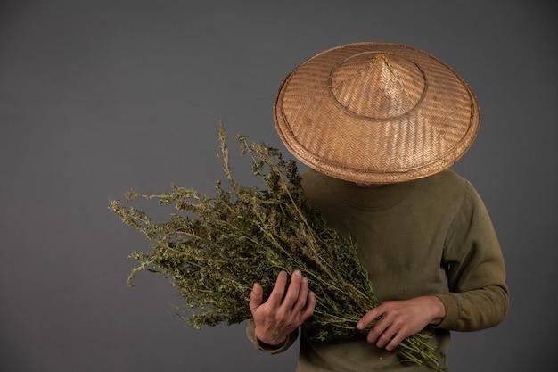 Les planteurs tiennent des arbres de cannabis sur un fond gris. Photo gratuit