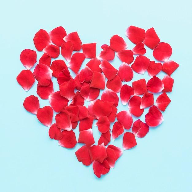 Plat Laïque Iceberg Roses Pétales Coeur Photo gratuit