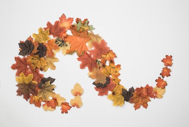Plat poser de feuilles d'automne placées en motif abstrait Photo gratuit