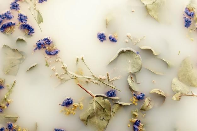 Plat poser des fleurs bleu foncé dans de l'eau de couleur blanche Photo gratuit