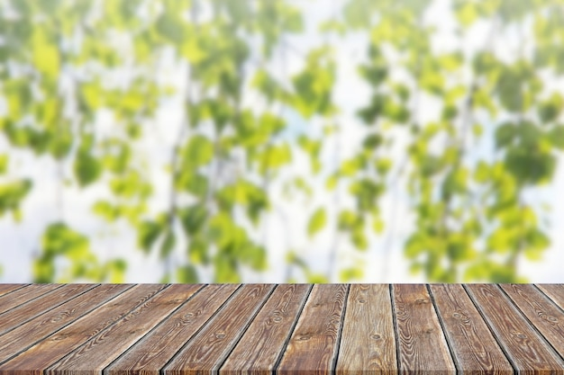 Plateau vide sur un arrière-plan flou des branches vertes. Photo Premium