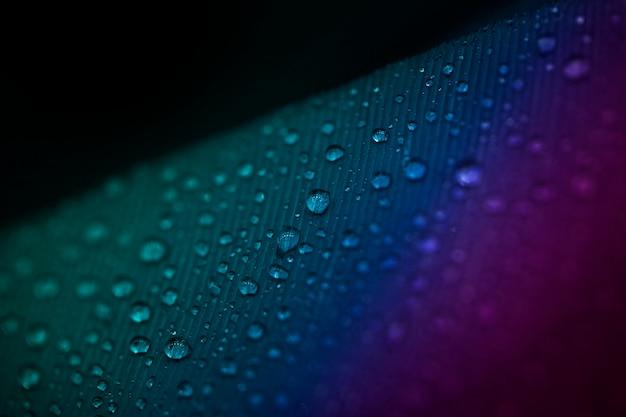 Plein cadre de gouttelettes sur la surface de la plume colorée Photo gratuit