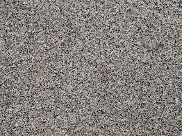 Plein cadre de lichen poussant sur un rocher Photo gratuit