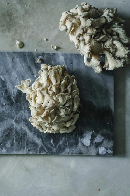 Pleurotes fraîches sur une ardoise grise Photo gratuit