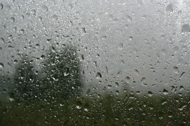 La pluie tombe sur le verre et brouille la silhouette des arbres Photo Premium